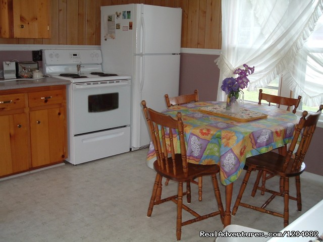 Guest house kitchen - Highlyn View Chateau - Clean,comfortable cottages