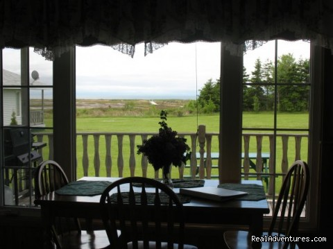 Window View - Century Farm Waterfront Cottages