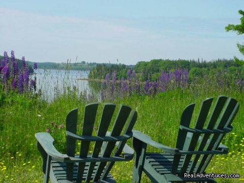 A quiet place to enjoy - Bayview Pines Country Inn