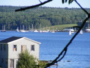 Trellis House Accommodation Vacation Rentals Cape Breton Island, Nova Scotia