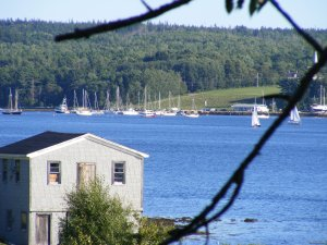Trellis House Accommodation Cape Breton Island, Nova Scotia Vacation Rentals