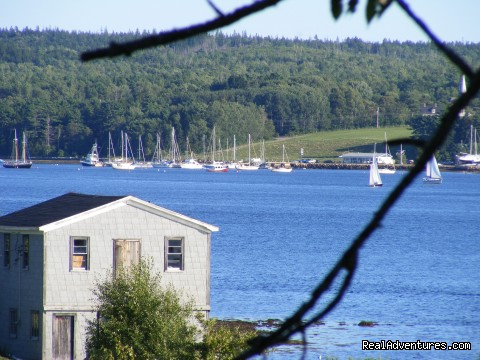 Trellis House Accommodation: the lahave river yacht club view from Trellis House