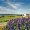 Cape View Motel and Cottages Mavillette, Nova Scotia Hotels & Resorts