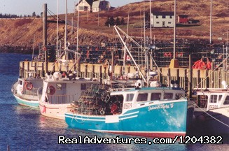 Take a walk to explore the lobster boats - Cottage on Beautiful Cove