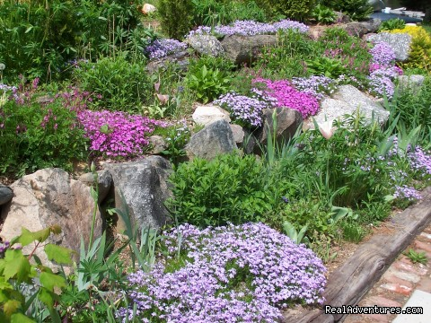 Rock Garden - Lakefront Peace & Serenity at Tranquil Times B&B