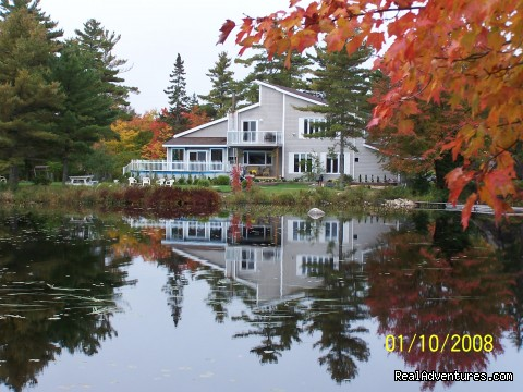 Lakefront Peace & Serenity at Tranquil Times B&B: TRANQUIL TIMES B&B