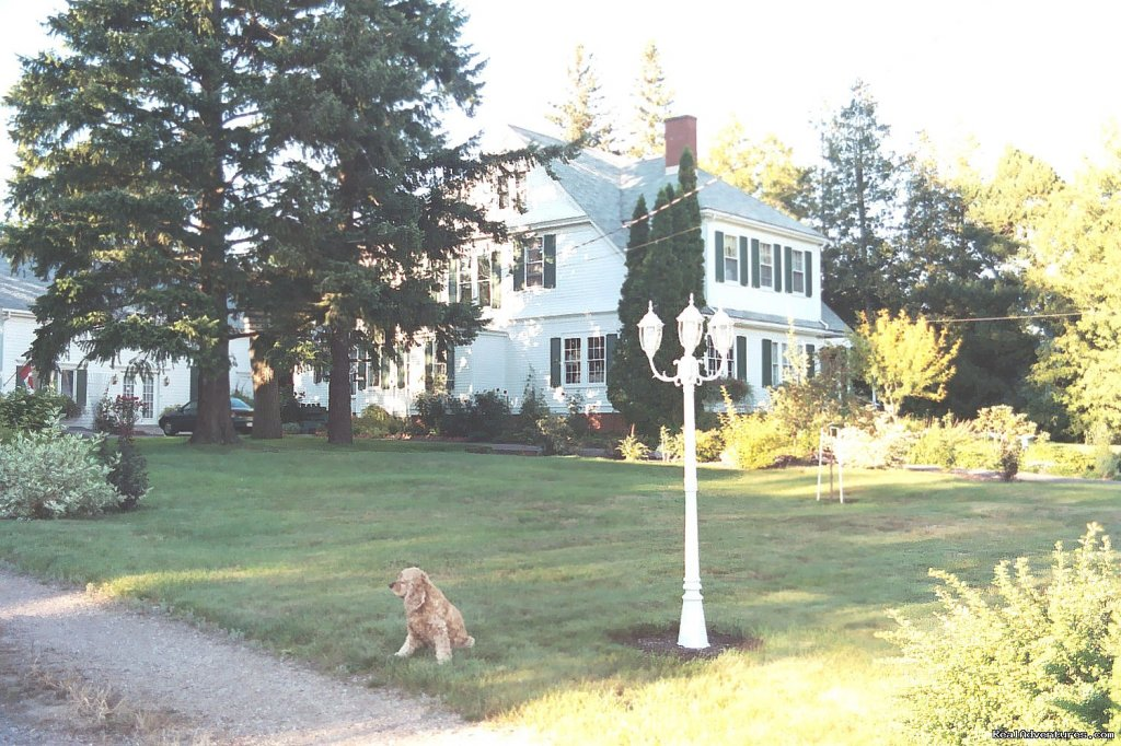 Harrington House B&B offers 2 rooms for your enjoyment, Room 1 has an ensuite bath, the second room has a private bath.  A third room is available for a 3rd person. 