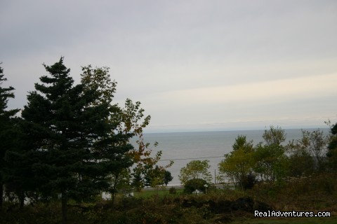 View from Blue Heron Cottage - Rocky Shores & Seals Cottages