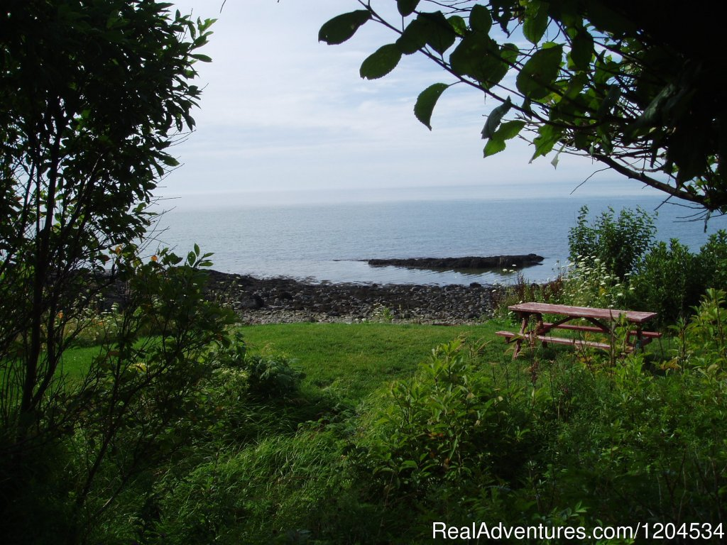Oceanfront tent site on the beautiful Bay of Fundy | Image #5/6 | Camp on the beautiful Bay of Fundy in Nova Scotia