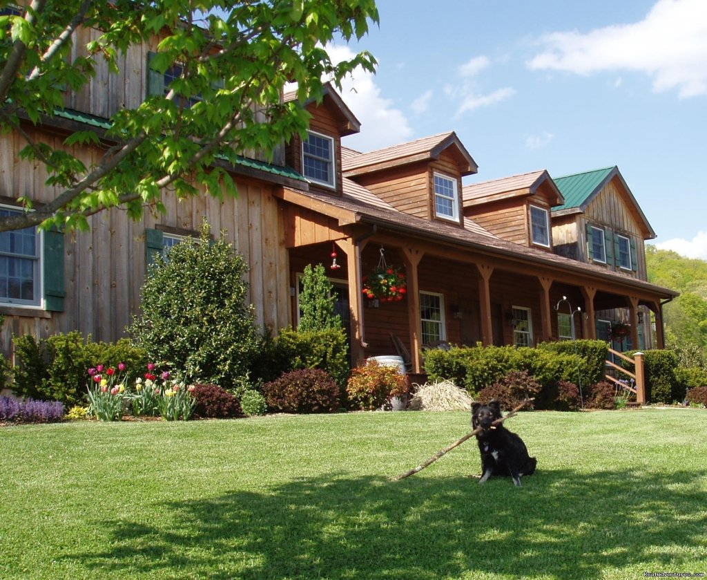 Ellie welcomes visitors to Fox Hill | Image #7/21 | Enjoy the Great Outdoors at Fox Hill B&B Suites