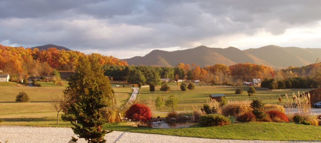 Fall in the Valley - Fox Hill's Front Yard | Image #20/21 | Enjoy the Great Outdoors at Fox Hill B&B Suites