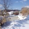 Snow around the ponds