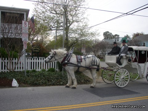 Your Carriage Awaits at Barclay Cottage B&B - Rekindle Romance in Virginia Beach Bed & Breakfast