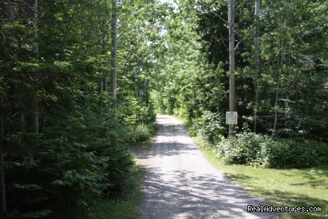 The road leading into the campground - Hyclass Ocean Campground & Cottages