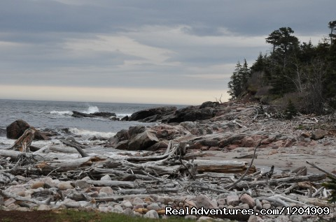 Cape Breton Coastline - Cabot Shores Wilderness Resort