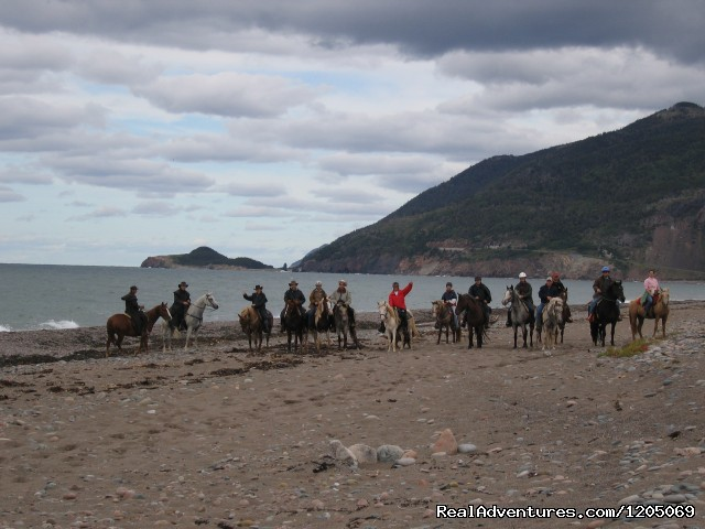 1(1/2) hour Beach Ride - Little Pond Stables Inc.