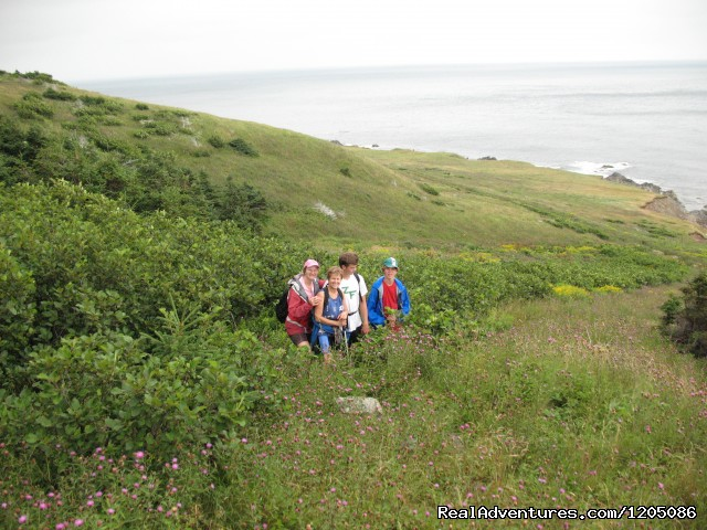 Northern Lighthouse tour - Adventure Packages at Sea Spray Outdoor Adventures
