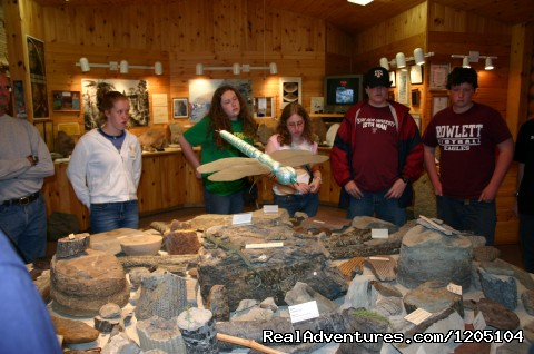 Fossils! - Experiential Tours