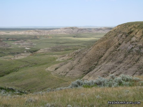 The East Block of the Grasslands National Park (#4 of 7) - Town of Rockglen