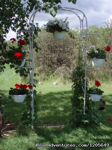 Wedding Arch - Intimate weddings hosted at Lorna's B&B