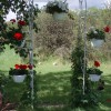 Intimate weddings hosted at Lorna's B&B
