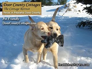 Pet Friendly - Cottage Retreat