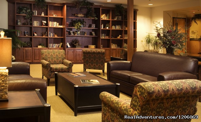 Comfort Suites comfortable, friendly place to stay: Comfort Suites library