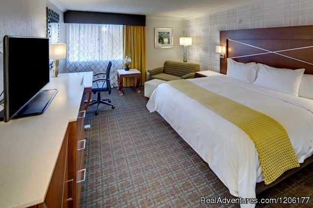 Deluxe King Bed - Doubletree by Hilton Madison Downtown