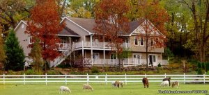 Country Estate for a Relaxing Getaway Bed & Breakfasts Madison, WI, Wisconsin
