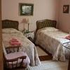 Cedars Guest House