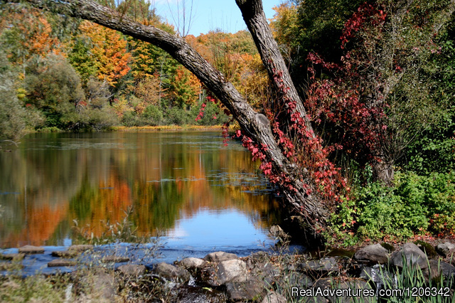 Presque Isle Chamber of Commerce: Fall at the Dam