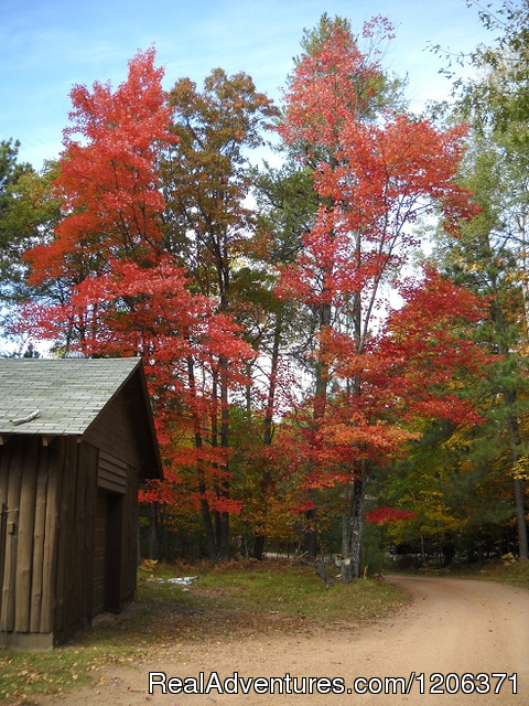 Fall colors - Cedaroma Lodge