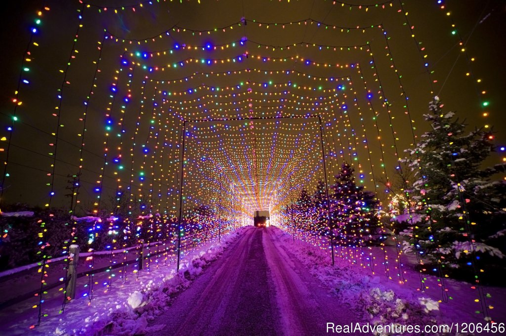Country Christmas Light Tunnel | Image #10/11 | Country Springs Hotel