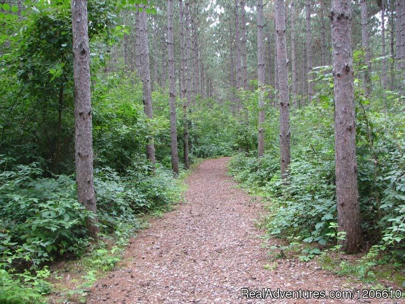 Hiking path | Image #13/21 | Silver Springs Campsites Inc