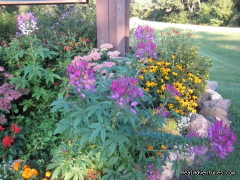 Beautiful Flower Beds - Silver Springs Campsites Inc