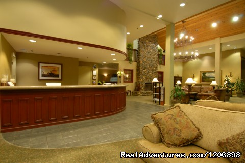 - Forest Suites Resort