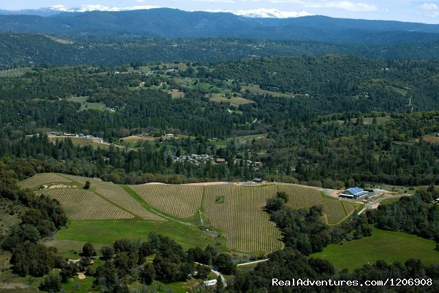 El Dorado Wine Country - El Dorado County Visitors' Authority