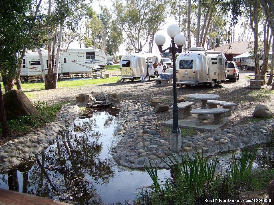 The Vineyard RV Park is centrally located near the Napa Valley Wine Country, San Francisco, the Jelly Belly Factory or the Vacaville Outlets.  Our park is conveniently located with easy access to Interstate 80 and Intertate 5.