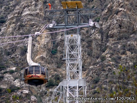 Palm Springs Aerial Tramway Sight-Seeing Tours Palm Springs, California
