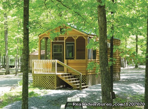 Image #6 of 20 - Family Camping Yogi Bear's Jellystone Park Florida
