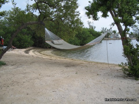Conch Cove - Boyd's Key West Campground