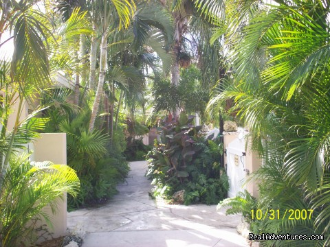 Pathway to the Pool - Boyd's Key West Campground