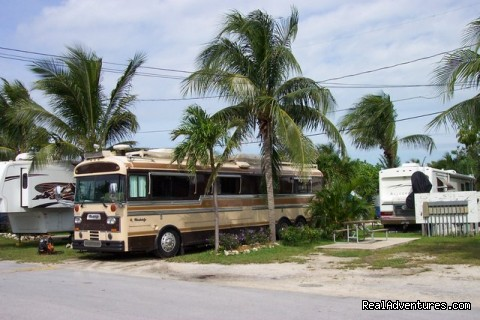 Boyd S Key West Campground Orlando Florida Campgrounds
