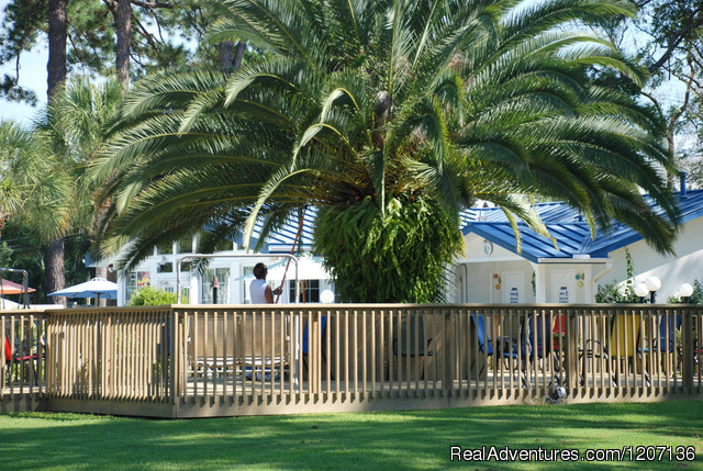 Beautifully Manicured Landscape - RV Park Beach Resort, Panama City Beach