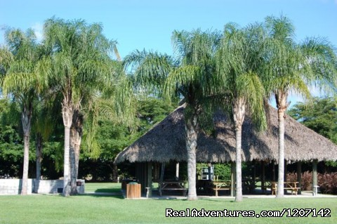 Tiki Hut - Miami Everglades Campground