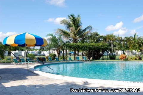 Swimming Pool - Miami Everglades Campground