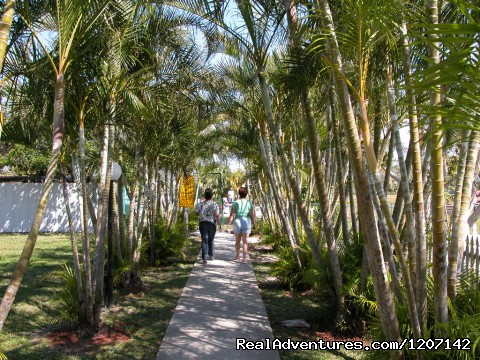 Pool Walk - Miami Everglades Campground