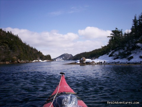 Winter kayaking - Burgeo Haven Inn on the Sea Bed & Breakfast
