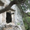 Lycian tomb in the forest