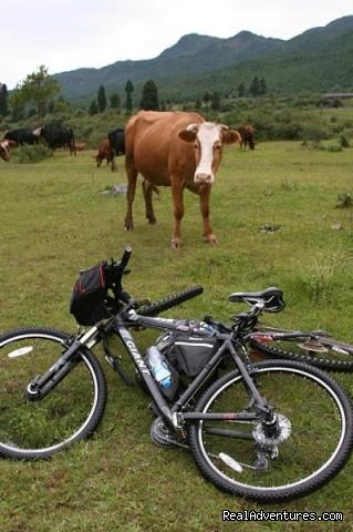 lijiang cycling countryside (#12 of 26) - China Bike Tours, Tour de China